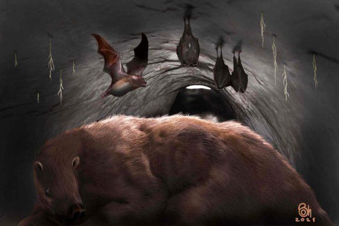Phát hiện ma cà rồng 100.000 tuổi, hóa đá trong hang quái thú - Ảnh 1.