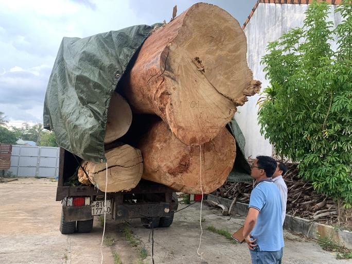 Tàn phá rừng Kbang - Ảnh 1.