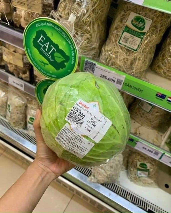 Thực hư siêu thị bán bắp cải 250.000 đồng/kg trong mùa dịch - Ảnh 2.