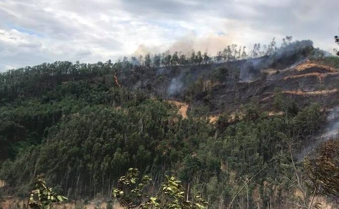 Người đàn ông ở Quảng Nam chết thương tâm khi chữa cháy rừng - Ảnh 1.