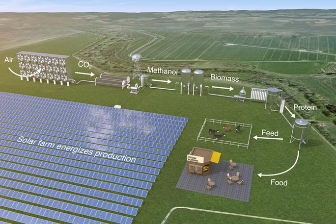 Sản xuất lương thực từ vi sinh vật bằng năng lượng mặt trời - Ảnh 1.