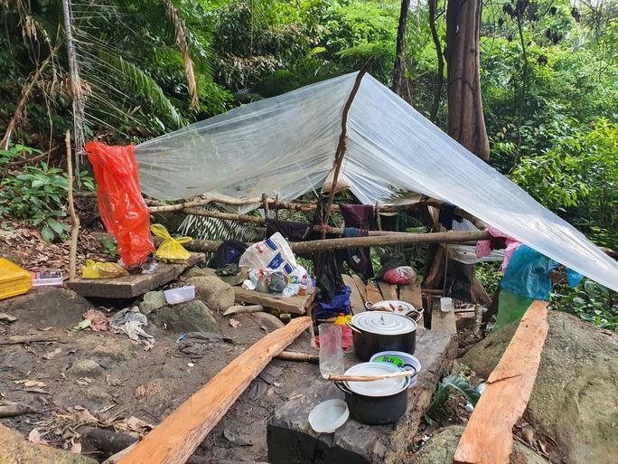 Cận cảnh tàn phá rừng nghiêm trọng ở Đắk Lắk - Ảnh 7.