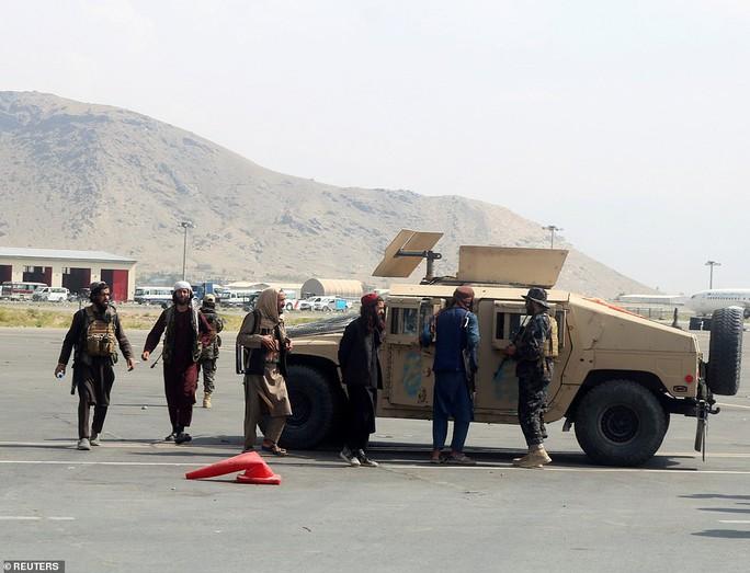 Mỹ bỏ rơi chó nghiệp vụ ở lại Afghanistan? - Ảnh 2.