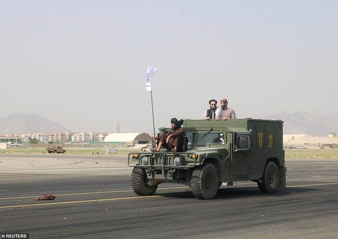 Mỹ bỏ rơi chó nghiệp vụ ở lại Afghanistan? - Ảnh 3.