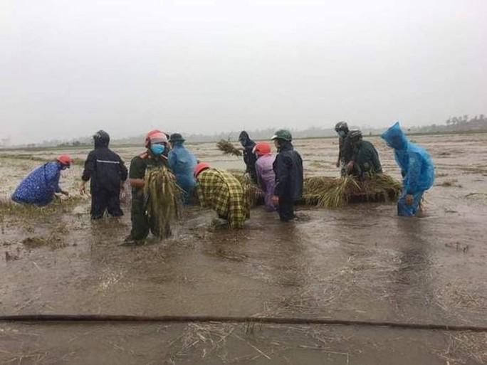 Quảng Ngãi mưa trắng trời, nhiều nơi ngập nặng, lũ lên nhanh - Ảnh 6.