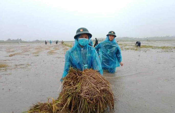 Quảng Ngãi mưa trắng trời, nhiều nơi ngập nặng, lũ lên nhanh - Ảnh 8.