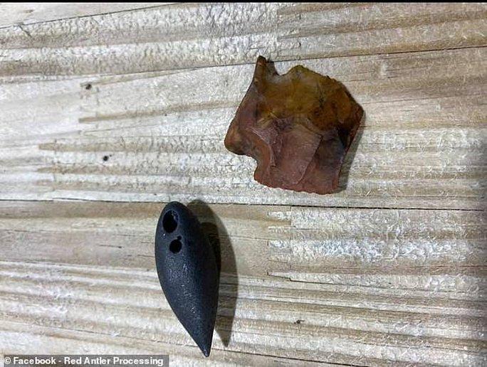 Mỹ: Phát hiện cổ vật ngàn năm trong bụng cá sấu quái vật - Ảnh 2.