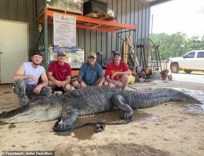 Mỹ: Phát hiện cổ vật ngàn năm trong bụng cá sấu quái vật - Ảnh 3.