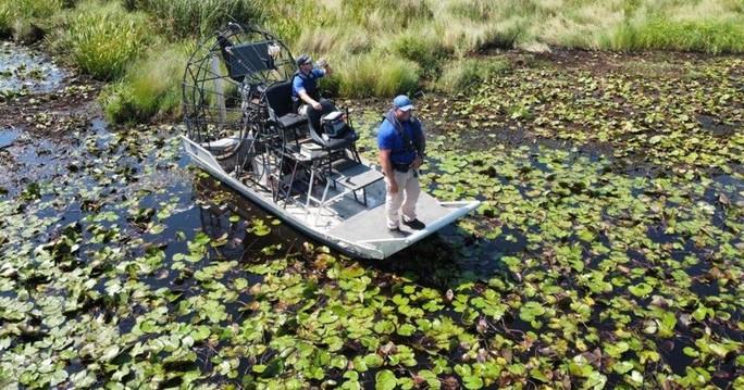 Mỹ: Phát hiện thi thể trong bụng cá sấu nặng hơn 200 kg - Ảnh 1.