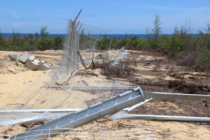"""Tình tiết bất ngờ vụ phá """"nhầm"""" 5,26 ha rừng phòng hộ ven biển Bình Định - Ảnh 3."""