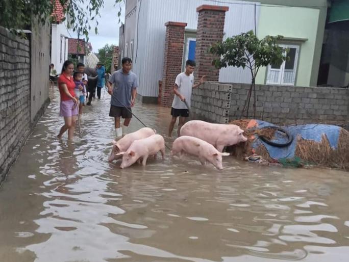 Mưa lũ lớn, hơn 700 ngôi nhà bị ngập, sạt, 1 người bị nước cuốn mất tích - Ảnh 2.