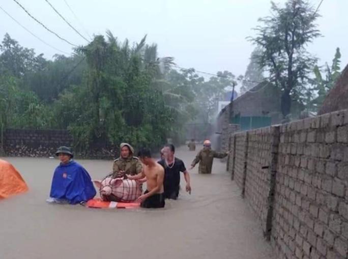 Mưa lũ lớn, hơn 700 ngôi nhà bị ngập, sạt, 1 người bị nước cuốn mất tích - Ảnh 3.