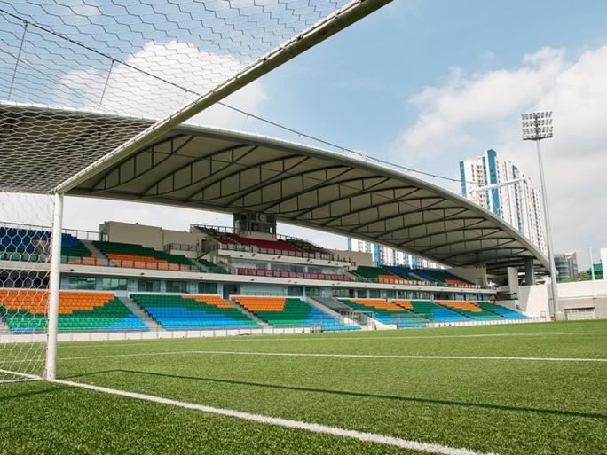 Singapore đăng cai AFF Cup, nỗi lo sân cỏ nhân tạo cho tuyển Việt Nam - Ảnh 2.