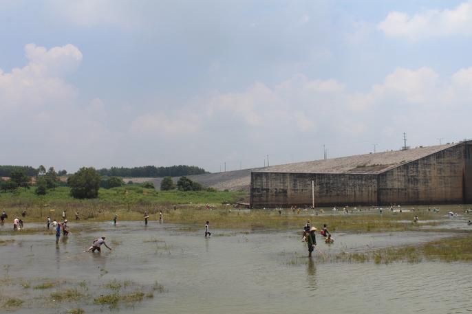 Đổ xô đi bắt cá ở hồ thủy điện Trị An - Ảnh 4.