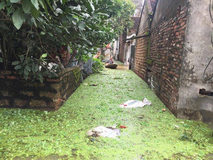 Cận cảnh nước ngập nhà dân ở nơi vỡ đê có kế hoạch - Ảnh 5.