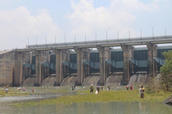 Đổ xô đi bắt cá ở hồ thủy điện Trị An - Ảnh 6.