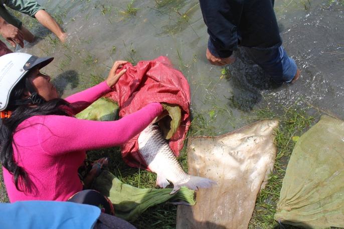 Đổ xô đi bắt cá ở hồ thủy điện Trị An - Ảnh 11.