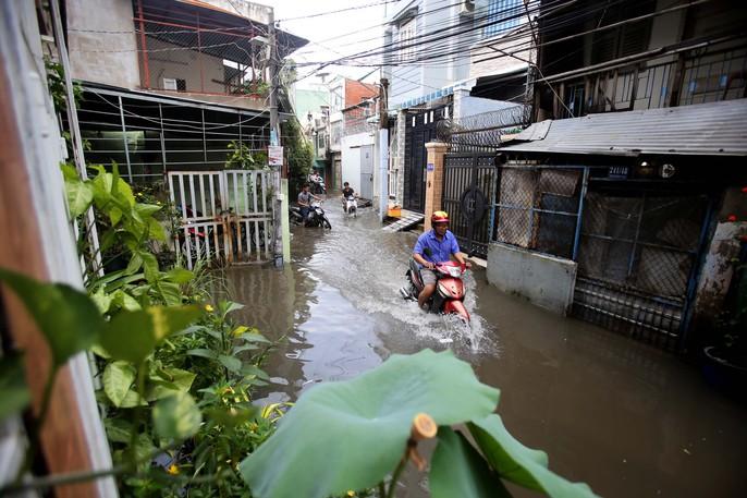 TP HCM mênh mông nước sau cơn mưa lớn - Ảnh 1.