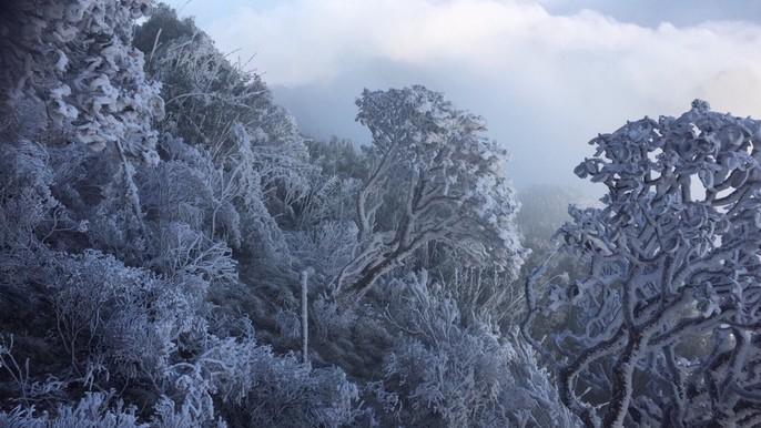 Nhiệt độ xuống -7 độ C, băng tuyết phủ trắng đỉnh Fansipan - Ảnh 10.