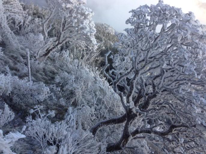 Nhiệt độ xuống -7 độ C, băng tuyết phủ trắng đỉnh Fansipan - Ảnh 13.