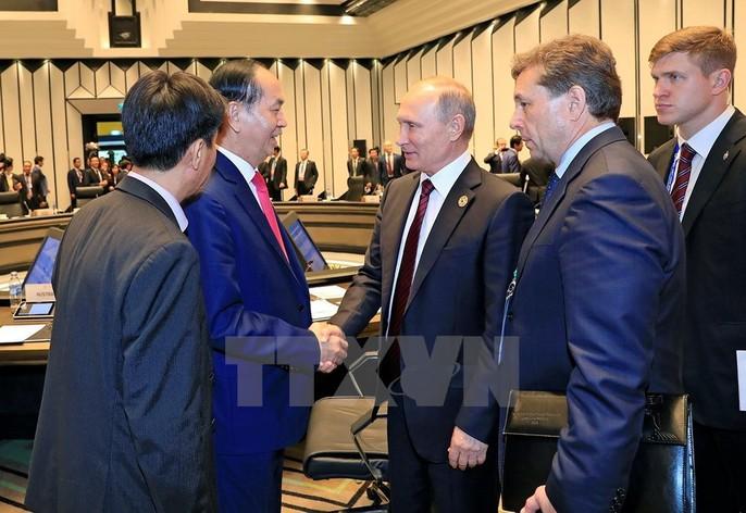 Chủ tịch nước: Thông qua Tuyên bố Đà Nẵng tại APEC 2017 - Ảnh 24.