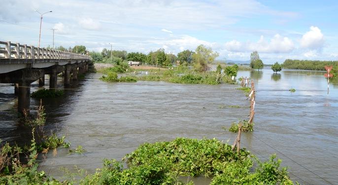 Xả đập, lũ cuồn cuộn chảy vào vùng Tứ giác Long Xuyên - Ảnh 2.