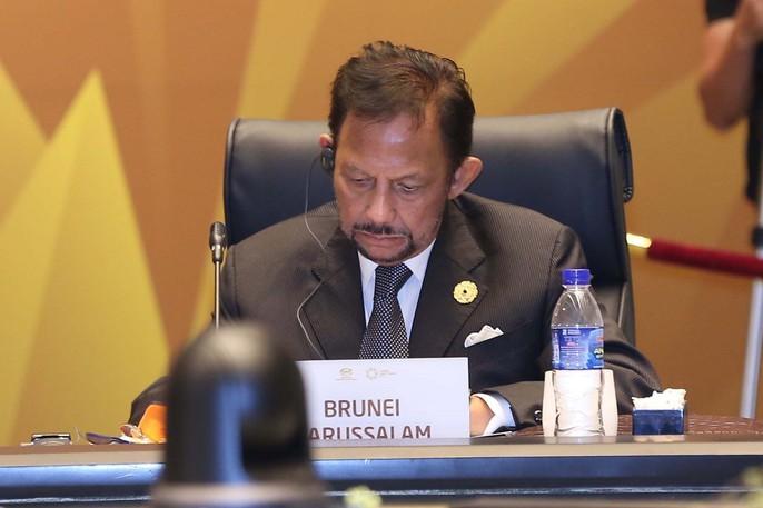 Chủ tịch nước: Thông qua Tuyên bố Đà Nẵng tại APEC 2017 - Ảnh 17.