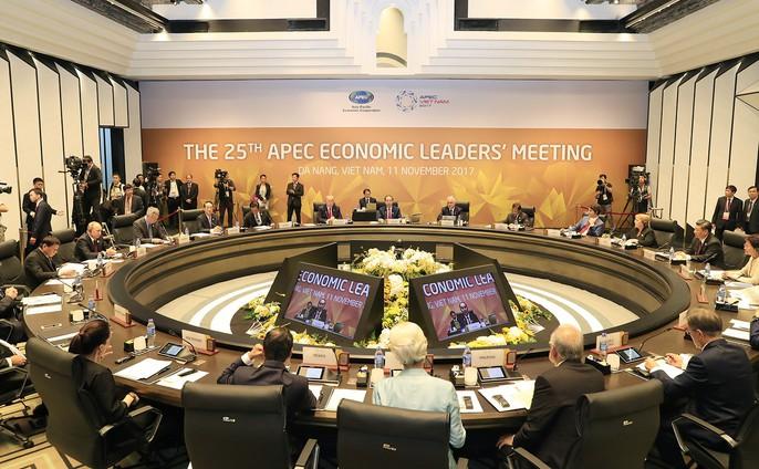Chủ tịch nước: Thông qua Tuyên bố Đà Nẵng tại APEC 2017 - Ảnh 5.