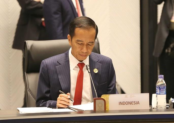 Chủ tịch nước: Thông qua Tuyên bố Đà Nẵng tại APEC 2017 - Ảnh 13.