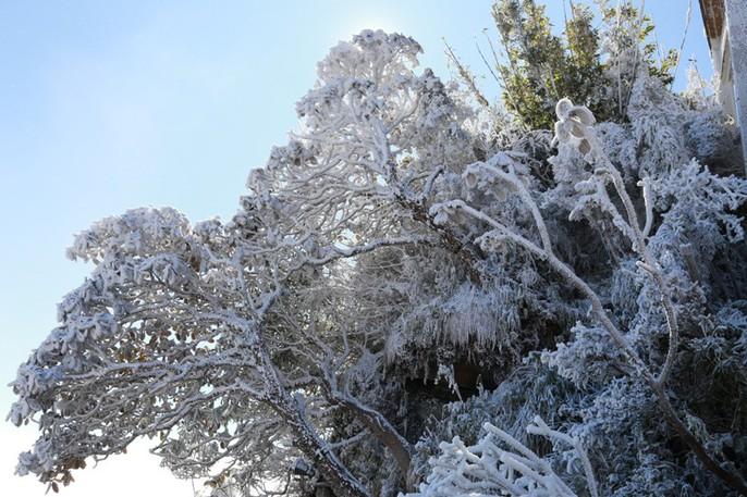 Nhiệt độ xuống -7 độ C, băng tuyết phủ trắng đỉnh Fansipan - Ảnh 29.
