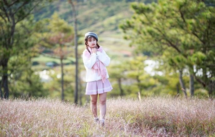 Ma mị cỏ hồng trong sương sớm Đà Lạt - Ảnh 4.