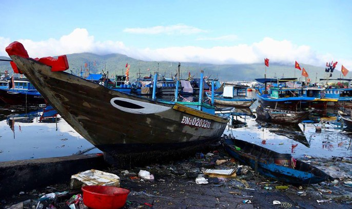 Cảng cá lớn nhất miền Trung nước đen ngòm, bốc mùi hôi thối - Ảnh 2.