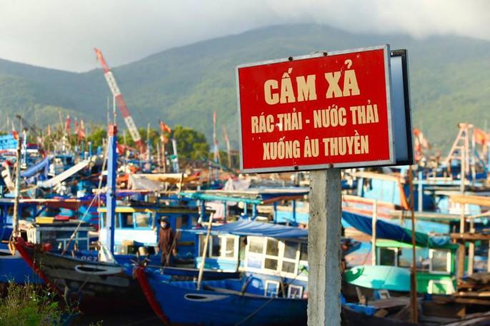 Cảng cá lớn nhất miền Trung nước đen ngòm, bốc mùi hôi thối - Ảnh 4.