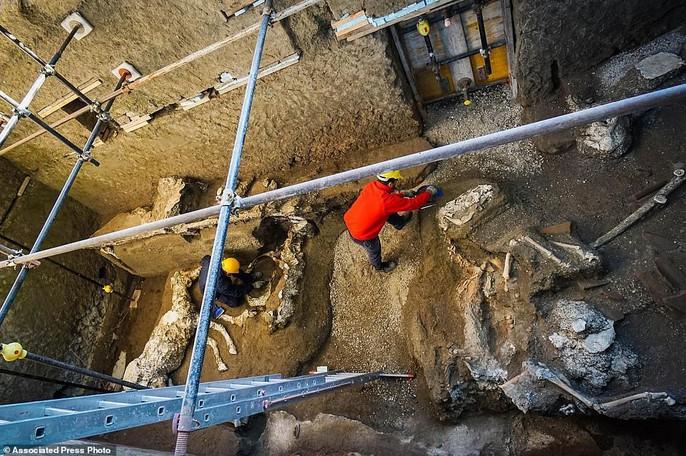 Bí ẩn ngựa đá từng có sự sống trong hầm mộ 2.000 năm - Ảnh 3.