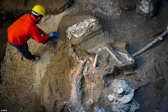 Bí ẩn ngựa đá từng có sự sống trong hầm mộ 2.000 năm - Ảnh 5.