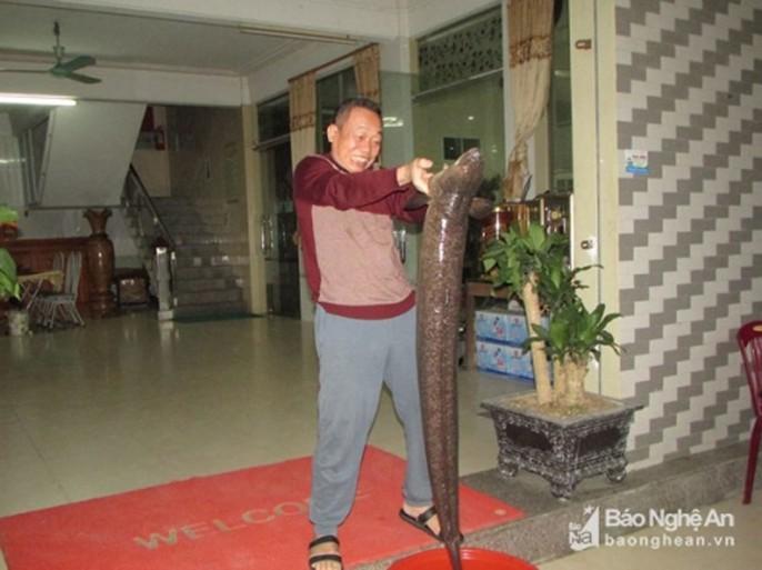Bí ẩn miền Tây xứ Nghệ: Loài cá nặng hàng yến, dài cả mét - Ảnh 10.