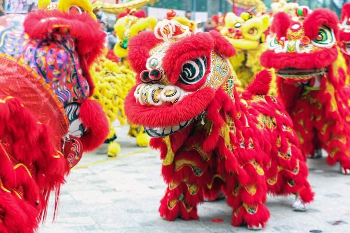 108 con lân đồng diễn, xếp hình Quốc kỳ xác lập kỷ lục Guinness Việt Nam - Ảnh 4.