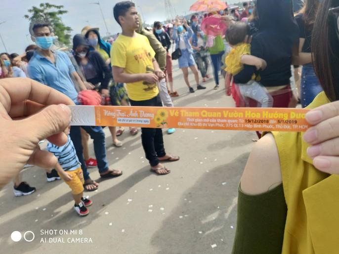 [VIDEO] - Nườm nượp đi xem cánh đồng hoa hướng dương ven sông Sài Gòn - Ảnh 3.