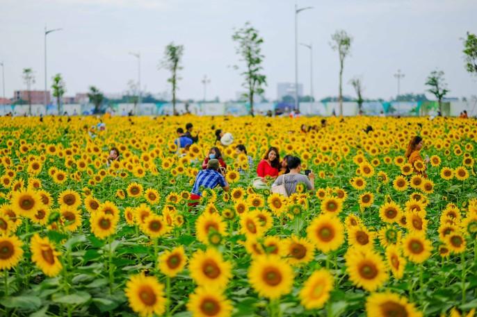 [VIDEO] - Nườm nượp đi xem cánh đồng hoa hướng dương ven sông Sài Gòn - Ảnh 18.