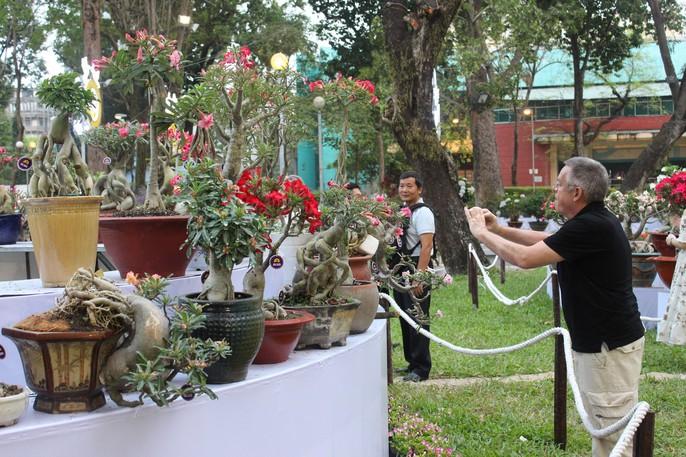 Người nước ngoài thích thú với Hội Hoa Xuân Mậu Tuất 2018 - Ảnh 2.
