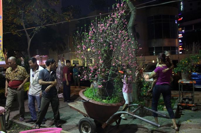 Người Sài Gòn rộn ràng tham quan chợ hoa trong đêm - Ảnh 2.