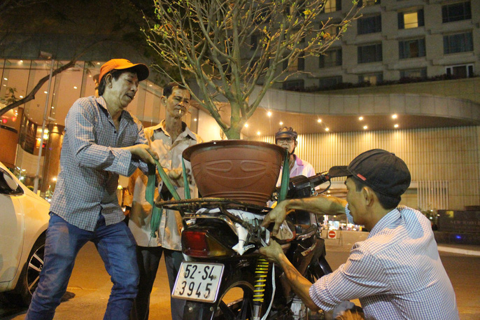 Người Sài Gòn rộn ràng tham quan chợ hoa trong đêm - Ảnh 13.