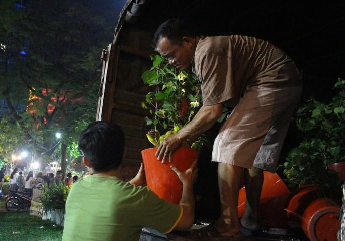 Người Sài Gòn rộn ràng tham quan chợ hoa trong đêm - Ảnh 3.