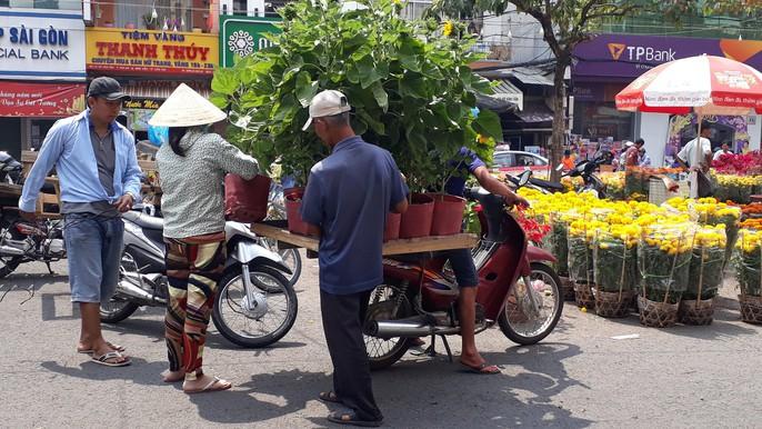 Người bán hoa kiểng ở miền Tây thà chở về chứ không bán rẻ như cho - Ảnh 14.