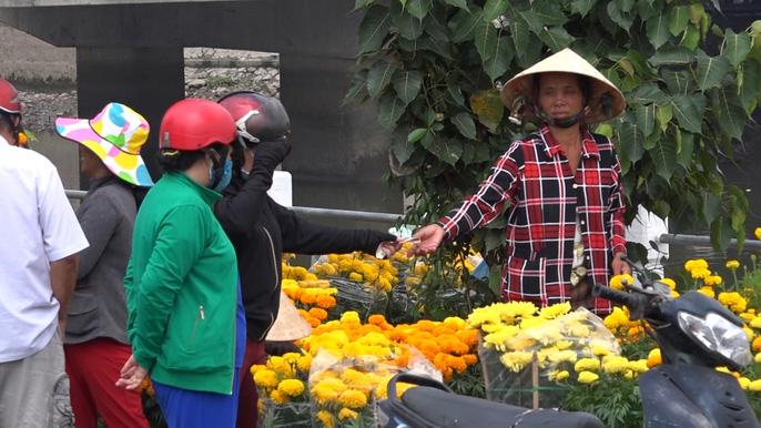 Người bán hoa kiểng ở miền Tây thà chở về chứ không bán rẻ như cho - Ảnh 5.