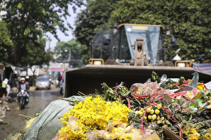 Hoa Tết dội chợ, chất như núi ở chợ hoa sỉ Đầm Sen, TP HCM - Ảnh 16.