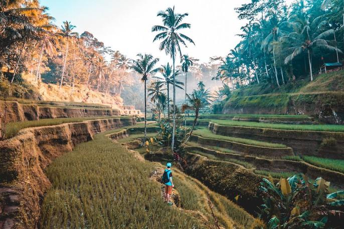 Việt Nam nổi bật trong 20 đất nước đẹp nhất thế giới - Ảnh 15.