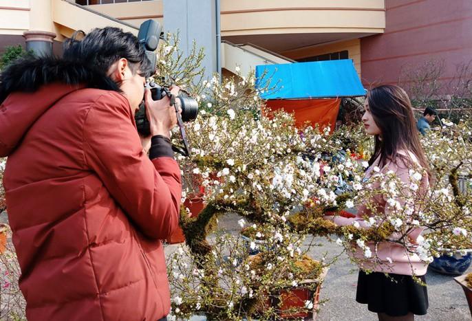 Mai trắng quý gây sốc với giá trăm triệu tại chợ hoa Tết đất cố đô - Ảnh 12.