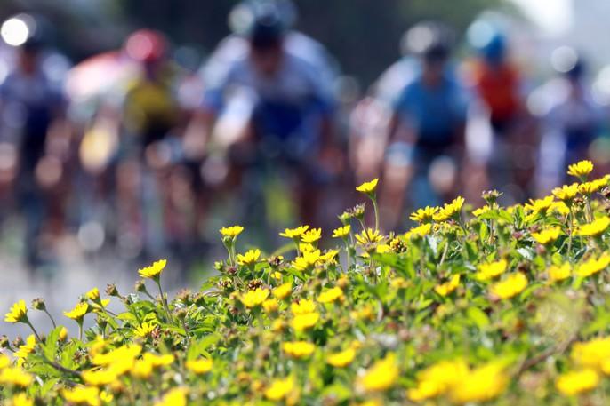 Thành Tâm đoạt Áo vàng ở xứ hoa vàng trên cỏ xanh - Ảnh 2.