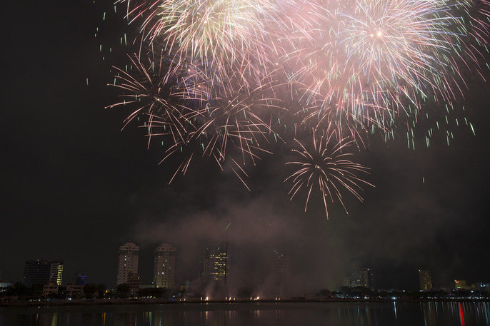 Pháo hoa rực sáng trên sông Hàn - Ảnh 9.